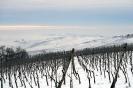 Inverno 2010/2011 In Oltrepò